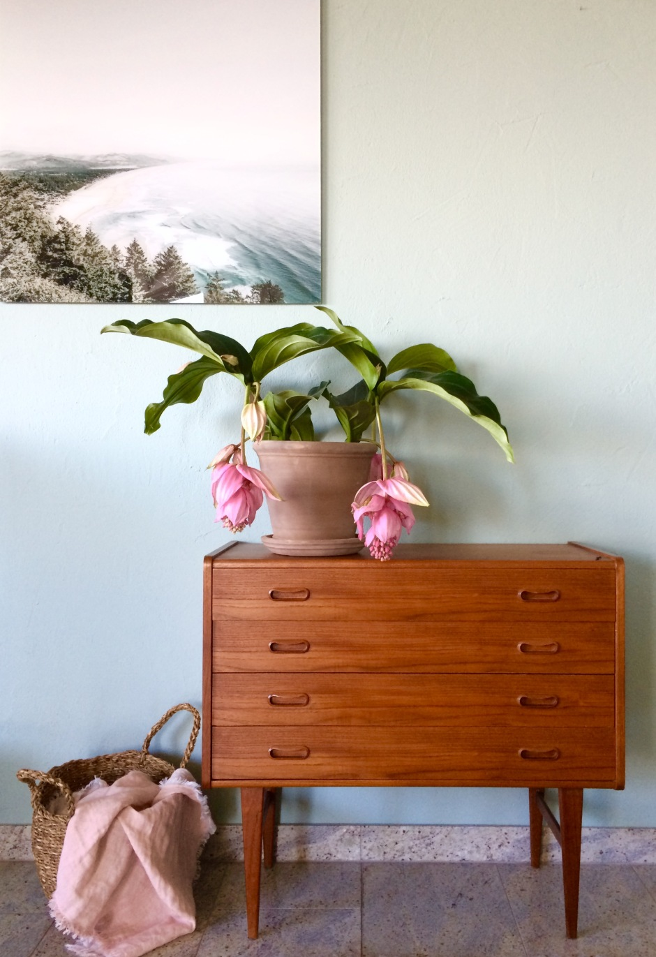 Teak danish chest of Drawers from Tatsiana Switserland bought at VAN ONS Mid century design furniture